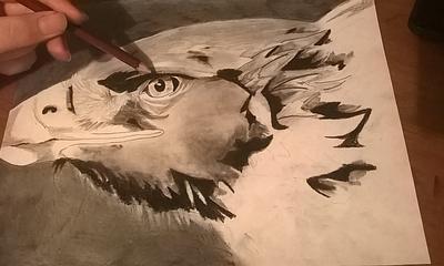 Realistic Eagle