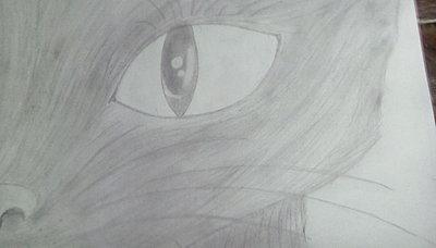 Realistic cat eye pencil art